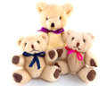 Mummy teddy bear with twins cute white background Royalty Free Stock Image