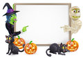 Mummy and witch halloween sign or banner with orange pumpkins black s cats s broom stick cartoon Royalty Free Stock Photo