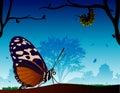 Mundo de la mariposa Foto de archivo libre de regalías