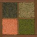 Mung bean and lentils (red, green, French) Royalty Free Stock Photo