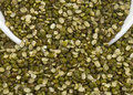 Mung beans indian traditional food Stock Photos