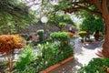 Municipal park ribeira brava sao nicolau island cape verde cabo africa Royalty Free Stock Photo