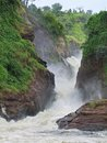 Murchison falls the idyllic in uganda africa with raging torrent Royalty Free Stock Images