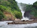 Murchison falls in uganda the africa Royalty Free Stock Photos
