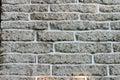 Muro di mattoni 1 Immagine Stock Libera da Diritti