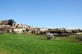 Murs the village in luberon south france green grass and pink flower spring march Stock Image
