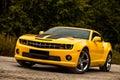 Muscle Car. Bumblebee.