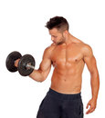 Muscled guy lifting weights isolated on white background Stock Images
