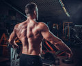 Muscled male model showing his back Royalty Free Stock Photo