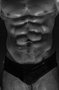 Muscled male torso abs Stock Photography