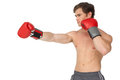 Muscly man wearing red boxing gloves and punching on white background Royalty Free Stock Photography