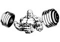 Muscular bodybuilder flex barbell Royalty Free Stock Photo