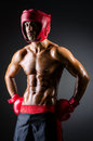 Muscular boxer Royalty Free Stock Image