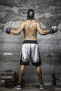 Muscular boxer man standing on the wall rear view of Royalty Free Stock Images