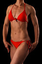 Muscular female body Stock Photography