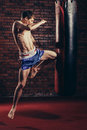 Muscular handsome fighter giving a forceful Royalty Free Stock Photo