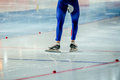 Muscular legs speed skater Royalty Free Stock Photo