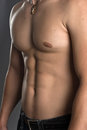 Muscular male torso stock image Stock Image