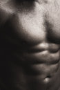 Muscular male wet torso Royalty Free Stock Photo
