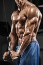 Muscular man working out in gym doing exercises, triceps, strong male naked torso abs Royalty Free Stock Photo