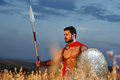 Muscular medieval warrior standing in the field
