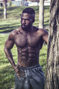 Muscular Shirtless Black Man in Park Royalty Free Stock Photo