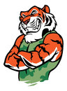 Muscular tiger posing vector of suitable as a mascot print t shirt etc Royalty Free Stock Photo