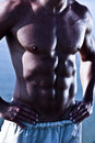 Muscule Sensual Male Torso Royalty Free Stock Photo