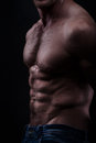 Musculed model isolated on dark background Royalty Free Stock Images