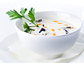 Mushroom cream soup tasty isolated on white background Stock Images