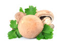 Mushroom and fresh parsley Stock Image