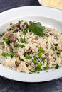 Mushroom pea and chicken risotto with parmesan cheese Stock Images