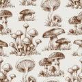 Mushroom seamless pattern Royalty Free Stock Photo