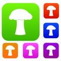 Mushroom set collection