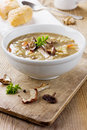 Mushroom soup with barley and vegetables Royalty Free Stock Photo