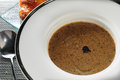 Mushroom soup with black truffle Stock Images
