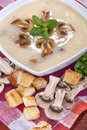 Mushroom soup domestic with cream and toasted bread Royalty Free Stock Images