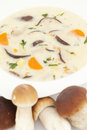 Mushroom soup in white plate on white background Stock Image