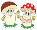 Mushroom and toadstool vector illustration