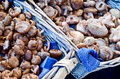 Mushrooms in basket on market Stock Photography