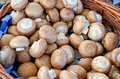 Mushrooms in basket on market Royalty Free Stock Photos