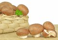 Mushrooms on Chopping Board Royalty Free Stock Images