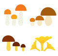 Mushrooms collection of edible vector illustration Stock Image