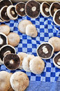 Mushrooms in crate on cloth on a market Royalty Free Stock Images
