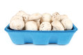 Mushrooms in plastic dish on white background Stock Photography