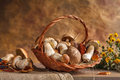 Mushrooms still life studio photography of wicker basket with edible Stock Photos