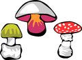 Mushrooms stylized color illustration of poisonous Royalty Free Stock Photography