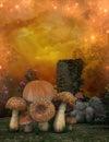 Mushrooms and tree stump