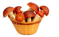 Mushrooms in a wicker basket on a white background strong presented Stock Photo