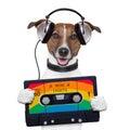 Music cassette tape headphone dog Royalty Free Stock Photo